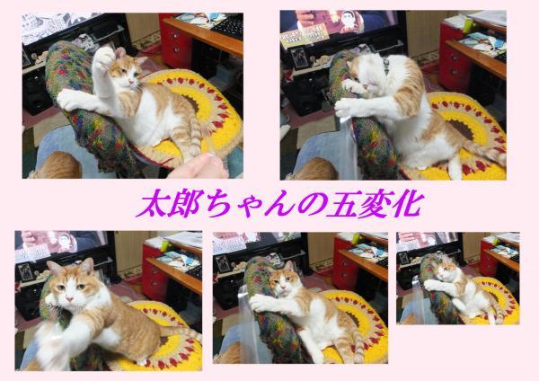 5螟牙喧_convert_20130126230345