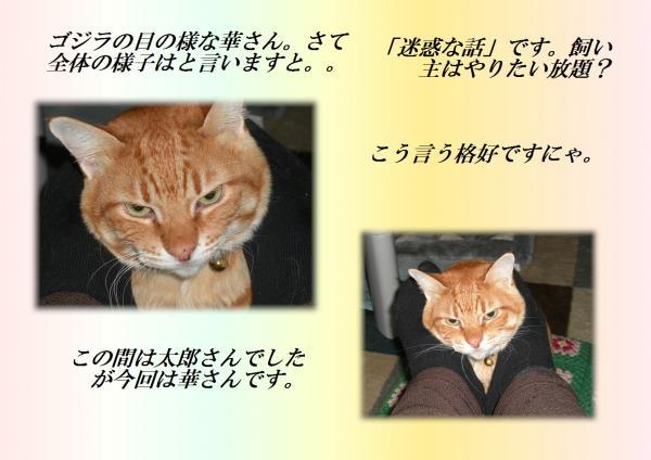 繧√>繧上¥_convert_20130209204359