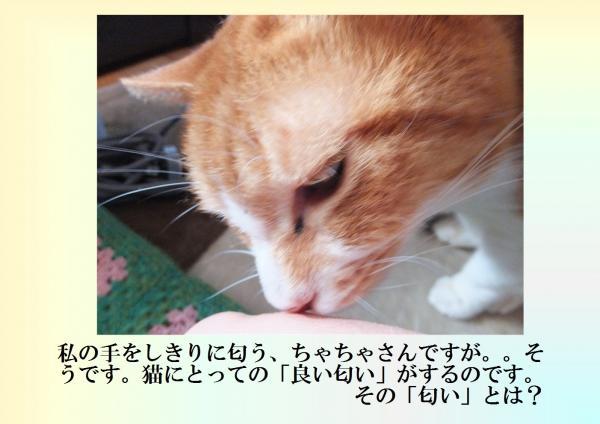 縺ォ縺翫>_convert_20130307225019