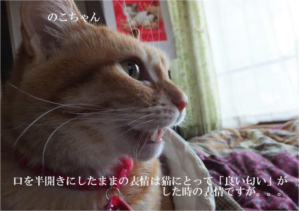 蛹ゅ>_convert_20130307225120