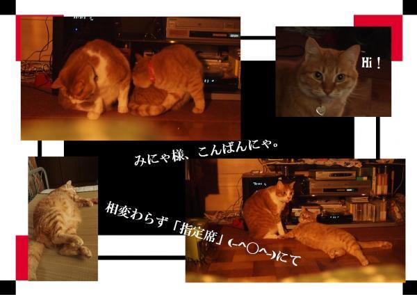 Hi_convert_20120706213535.jpg