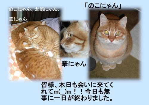 aisatsu_convert_20120118221957.jpg