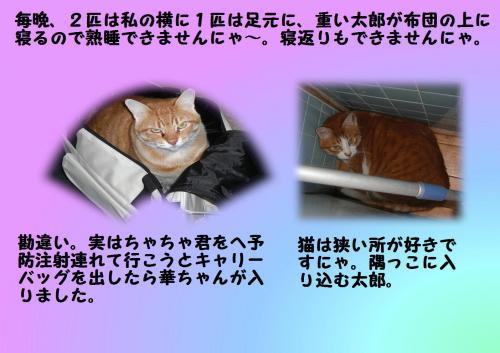 ba_convert_20120106212036.jpg