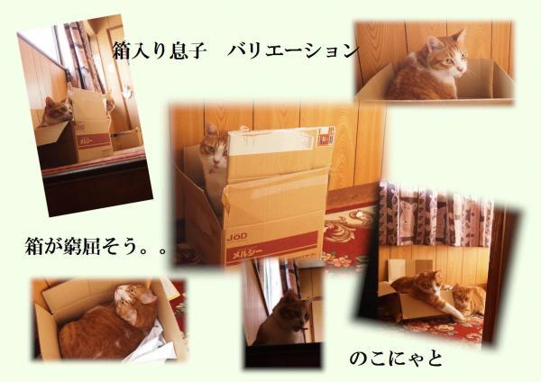 box_convert_20120623220616.jpg