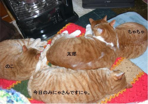 four_convert_20120121221052.jpg