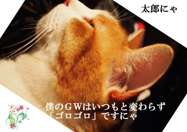 gw_convert_20120429193351.jpg