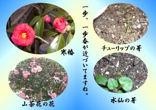 hana_convert_20120116220229.jpg
