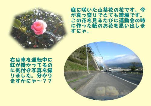 hani_convert_20120108221100.jpg