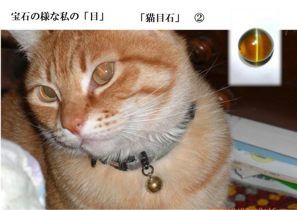houseki_convert_20120721180813.jpg
