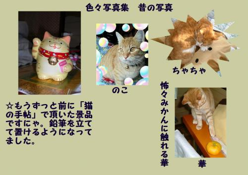 iro_convert_20120109233952.jpg
