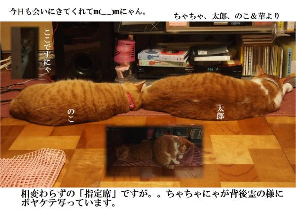 m(__)m_convert_20120704223726.jpg