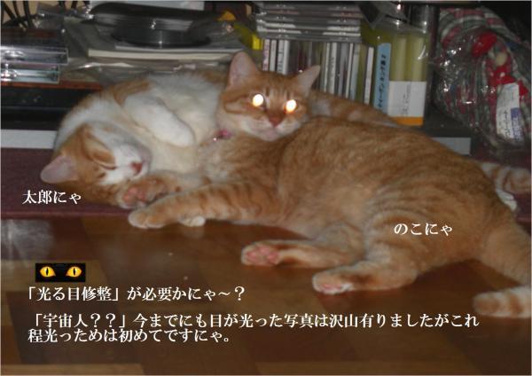 me_convert_20120713223520.jpg