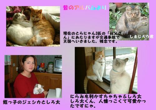 mei_convert_20120115202738.jpg