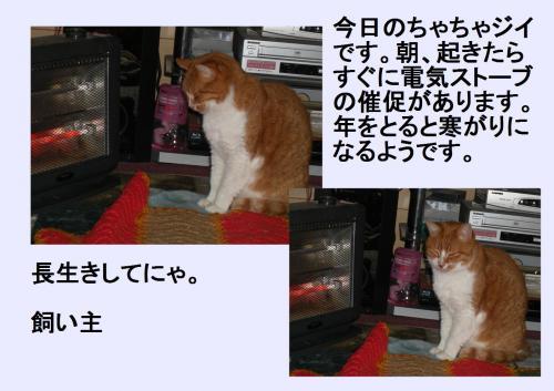 naga_convert_20120117220706.jpg
