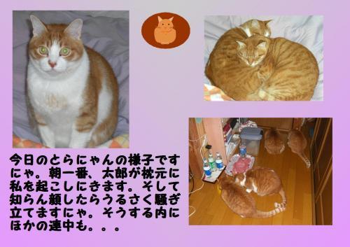oko_convert_20120115202820.jpg