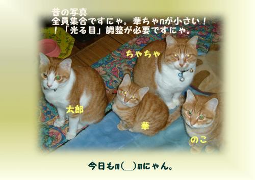shu_convert_20120110225205.jpg