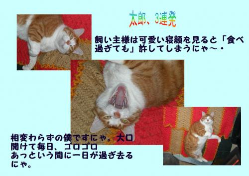 su_convert_20120109234030.jpg
