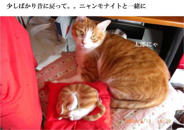 top_convert_20120720220634.jpg
