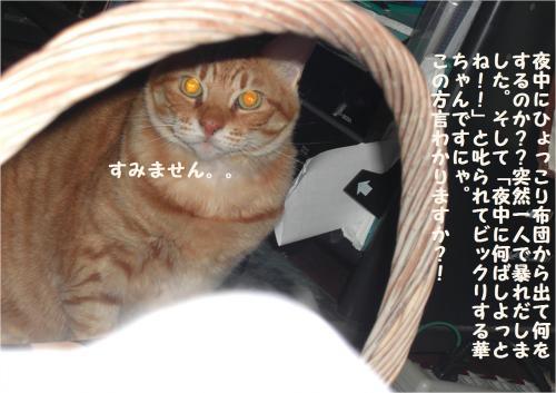 yo_convert_20120111223030.jpg