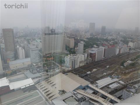 P2011_6.jpg