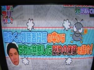 091_20100901061540.jpg