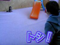 163_20101212191259.jpg