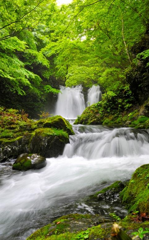 H22.5.29 倉の沢大滝
