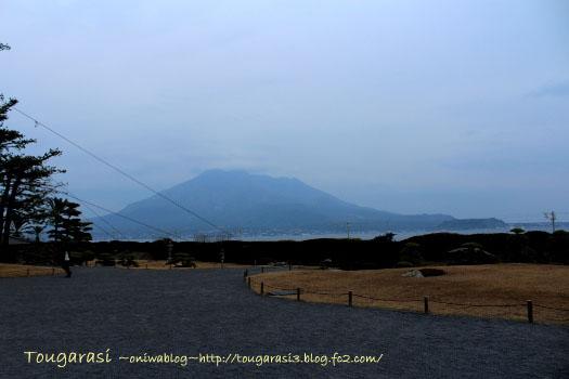 b20140111kagosima5.jpg
