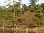奈良東大寺の庭園