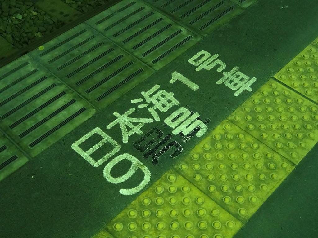 20131203nihonkai.jpg