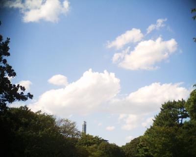 夏の名残のような雲:R2
