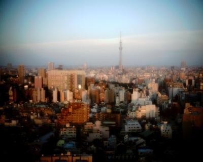 夕暮れの東京スカイツリー:Entry