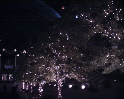 クリスマス準備中の恵比寿ガーデンプレイスで:R2