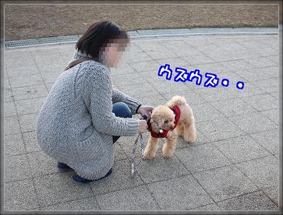 A8z1NAlj4XMhxUk1418519447_1418519678.jpg