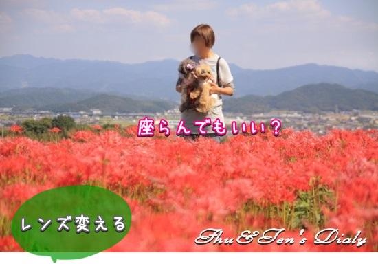 004IMG_1570.jpg
