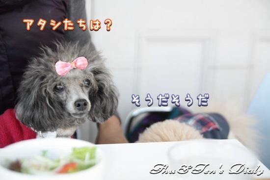 006IMG_5840.jpg