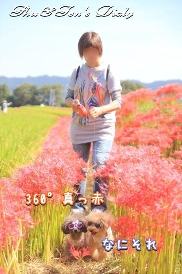 010IMG_1506.jpg