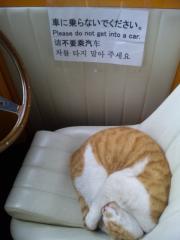 k車熟睡小次郎