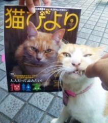 猫びより&小次郎