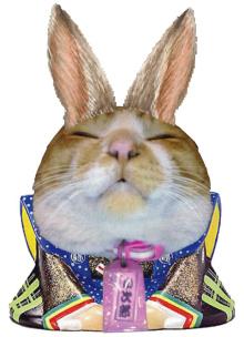 小次郎ウサギ