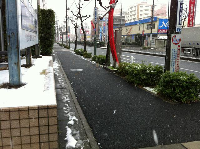 20111226-1.jpg