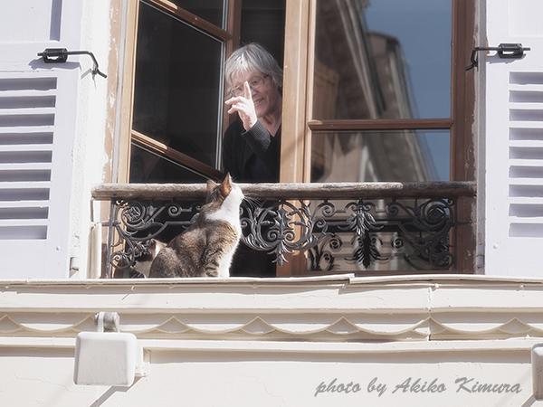 apt_cat_01