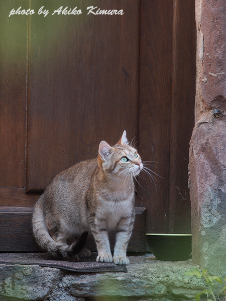 conques_cat_01