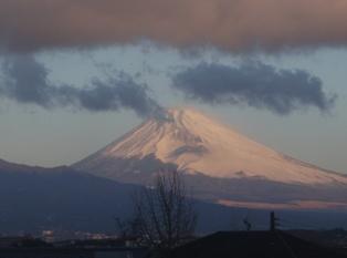2010初紅富士