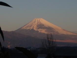 2011初紅富士