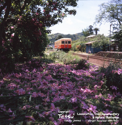 20110513高滝駅