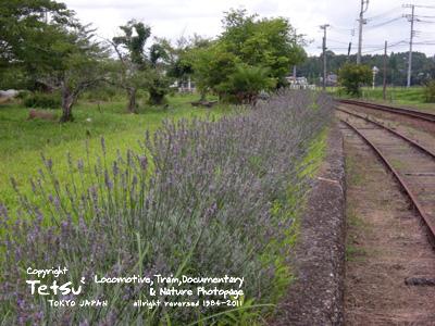 20110803上総鶴舞駅02