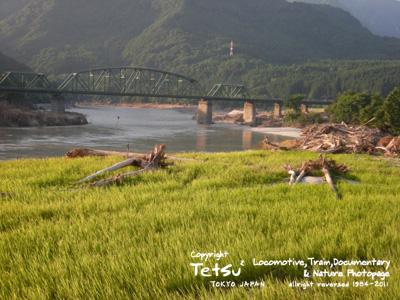 20110806鹿瀬・田圃