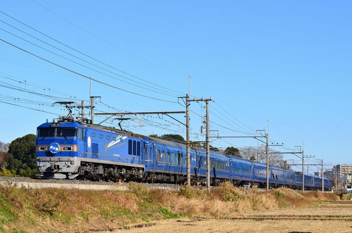 2013_55.jpg