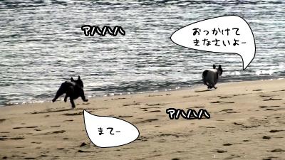 20110113133241(1).jpg